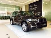 Bán xe BMW X5 xDrive35i 2017 giá 3 Tỷ 599 Triệu - TP HCM