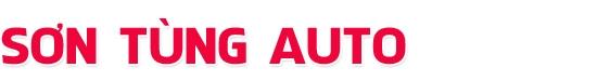 Salon Sơn Tùng Auto - Phân phối các dòng xe nhập khẩu cao cấp