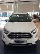 Bán xe Ford EcoSport Titanium 1.5L AT 2018 giá 615 Triệu - Hà Nội