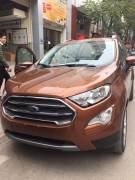 Bán xe Ford EcoSport Titanium 1.5L AT 2018 giá 610 Triệu - Hà Nội