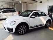 Bán xe Volkswagen Beetle Dune 2018 giá 1 Tỷ 469 Triệu - Bình Dương