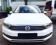 Volkswagen Passat 1.8 Bluemotion 2017 giá 1 Tỷ 350 Triệu - Bình Dương