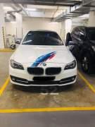Bán xe BMW 5 Series 520i 2016 giá 1 Tỷ 668 Triệu - TP HCM